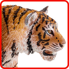 chacha-the-tiger